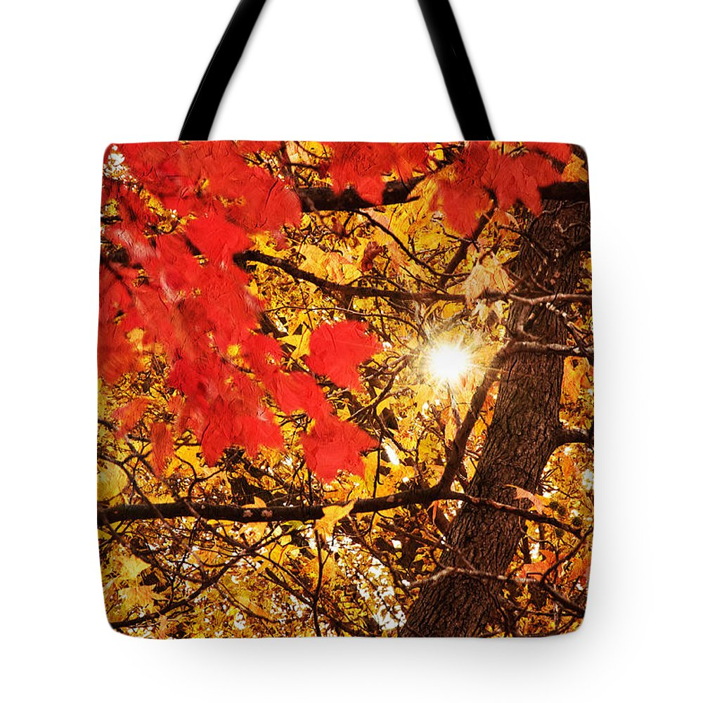 Autumn Photo Tote Bag featuring the photograph Autumn Sunrise Painterly by Andee Design