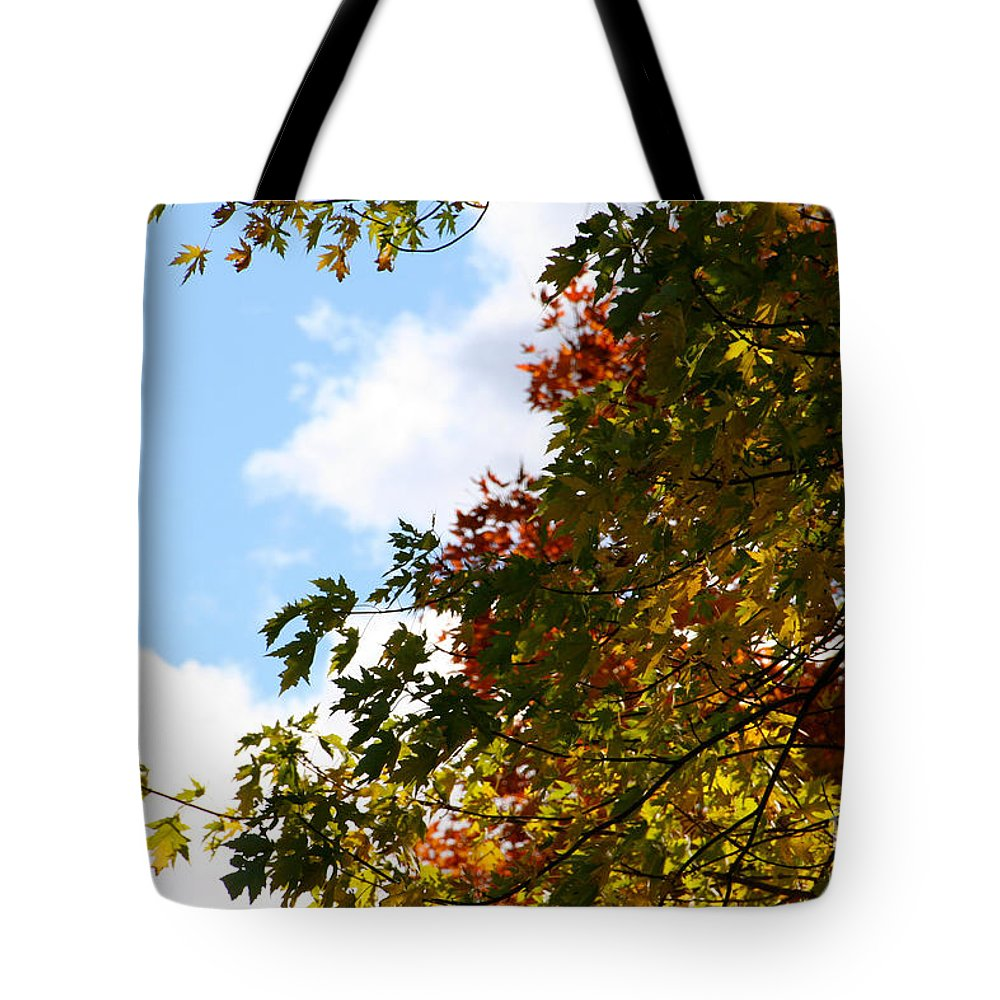Minnesota Tote Bag featuring the photograph Autumn To Perfection by Susan Herber