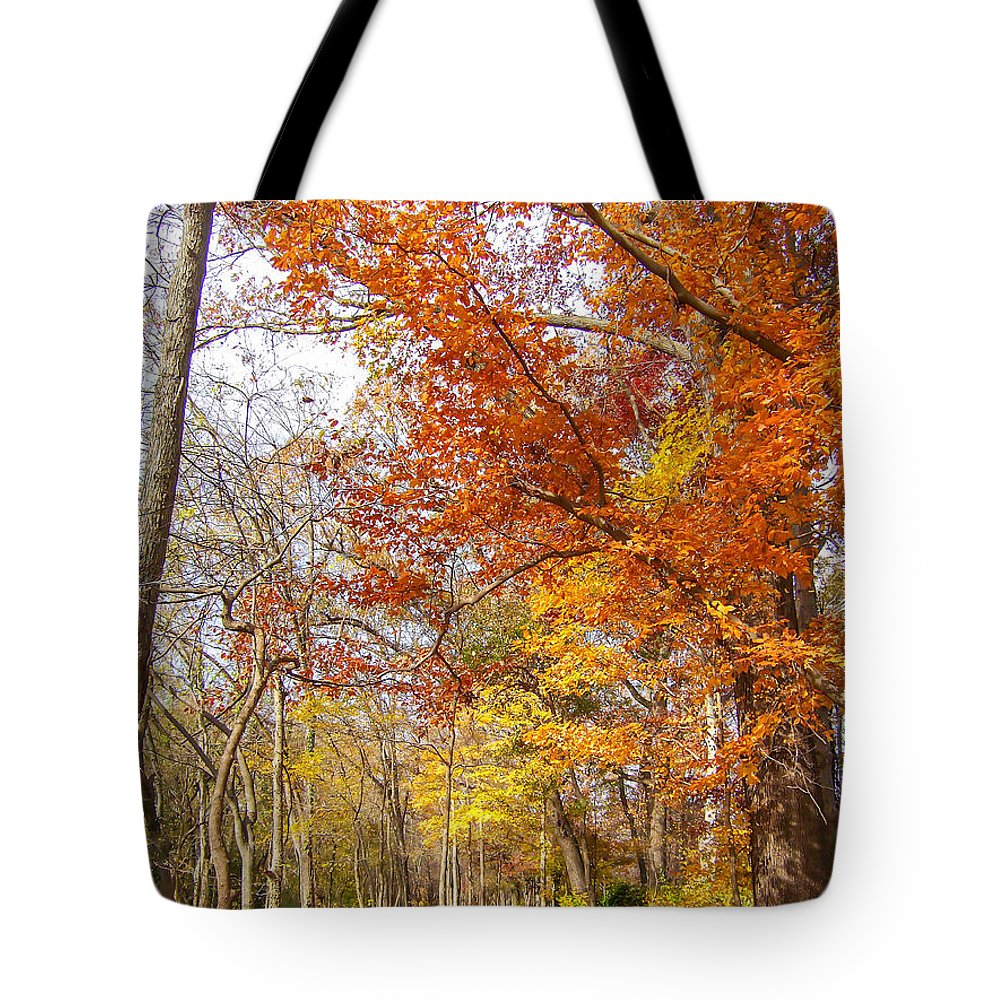 Landscape Tote Bag featuring the photograph Autumn Trail by Marc Crumpler