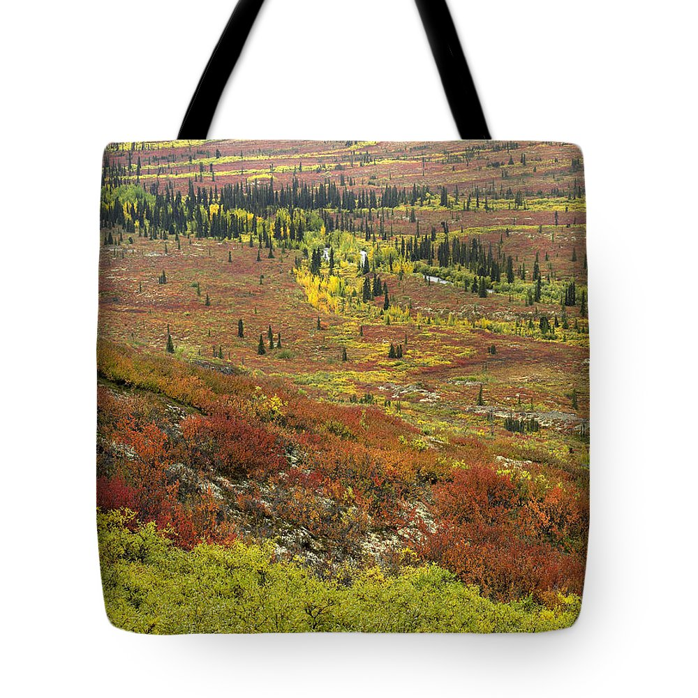 Autumn Tote Bag featuring the photograph Autumn Tundra With Boreal Forest by Tim Fitzharris