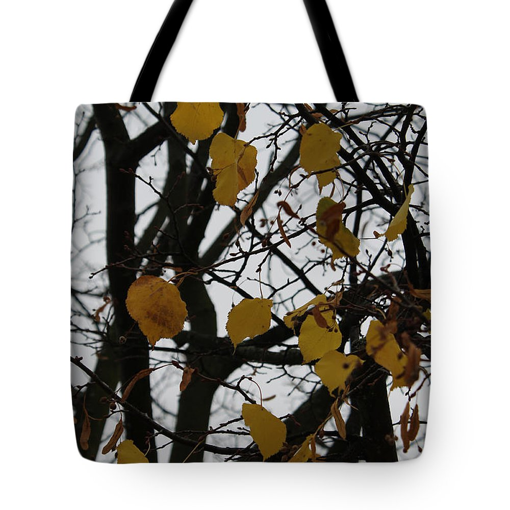 Tree Nature Park Leaf Leaves Yellow Autumn Photograph Tote Bag featuring the photograph Autumns Breath by Steve K