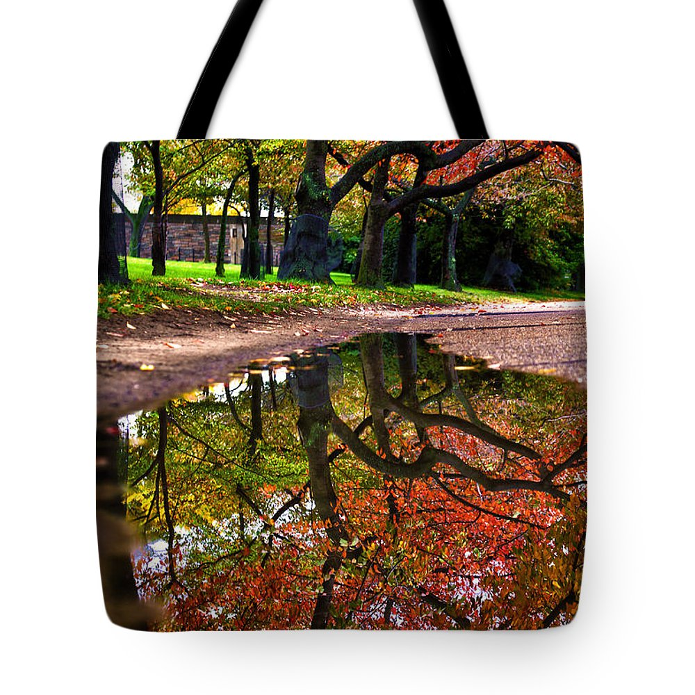 Autumn Tote Bag featuring the photograph Autumn's Mirror by Mitch Cat