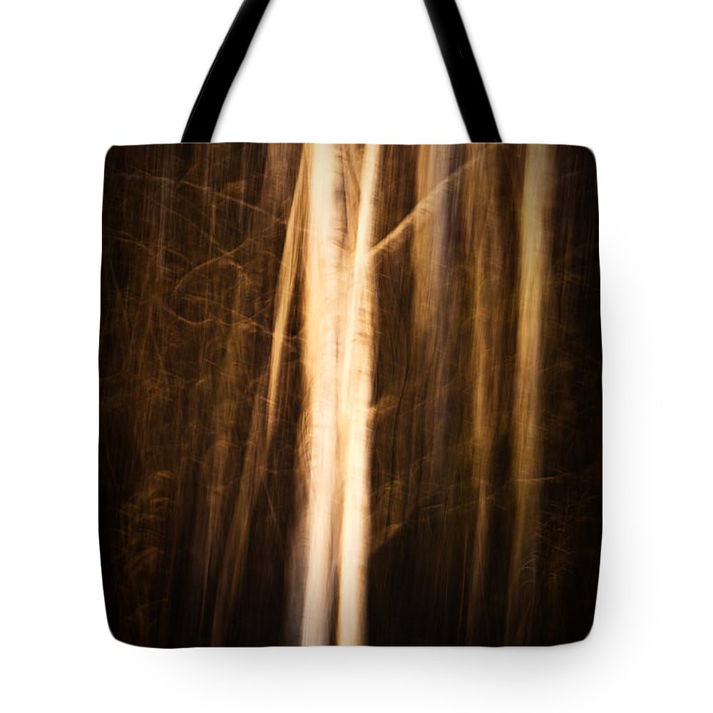 Art Tote Bag featuring the photograph Autumn's Promise 11 by Joe Mamer