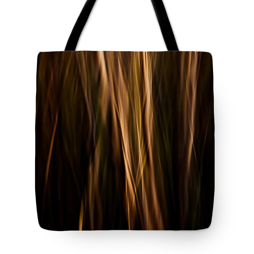 Art Tote Bag featuring the photograph Autumn's Promise 12 by Joe Mamer
