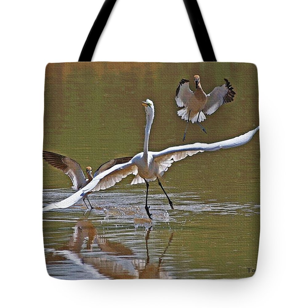 Avocets Tote Bag featuring the photograph Avocets Chase Off The Egret by Tom Janca