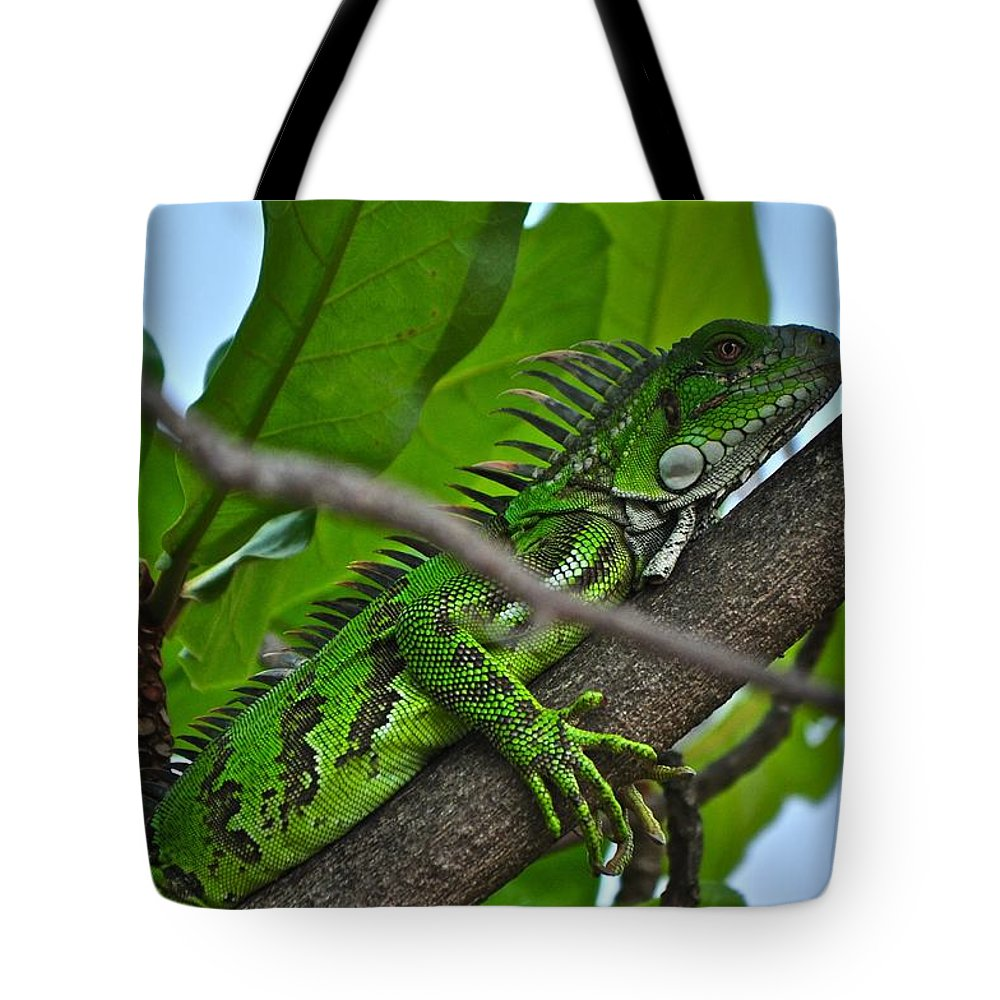 Green Tote Bag featuring the photograph Awaiting The Storm by Photos By Cassandra