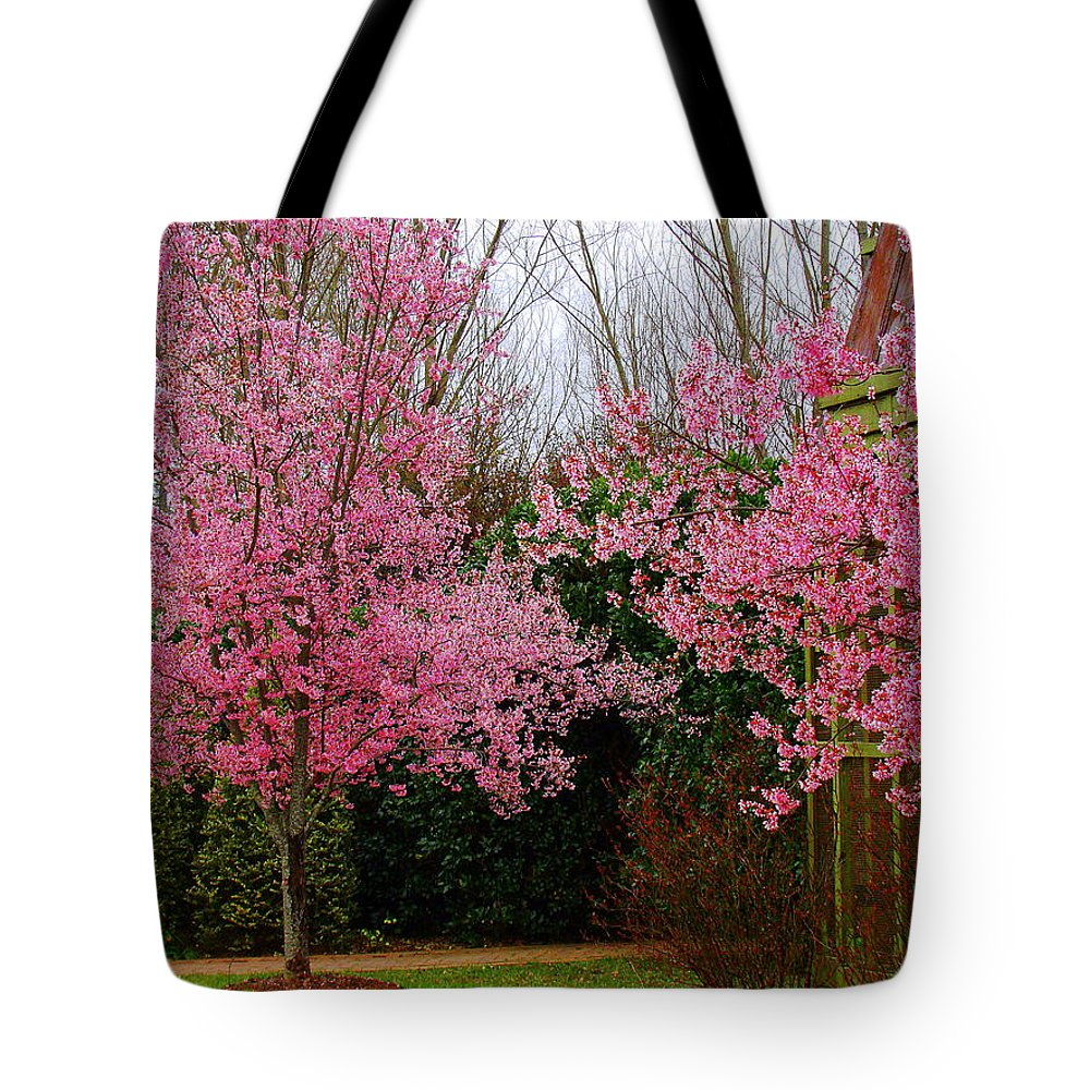 Fine Art Tote Bag featuring the photograph Awakening Dream by Rodney Lee Williams