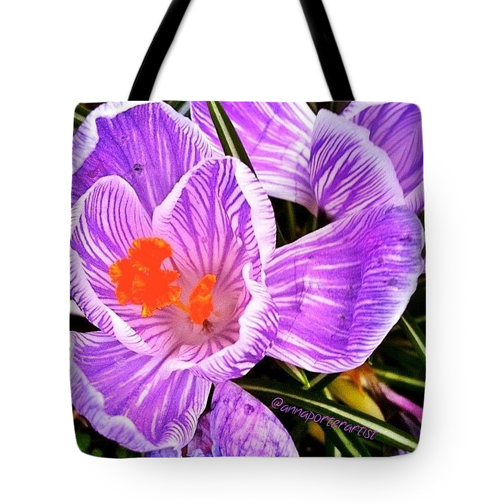 Flowers Tote Bag featuring the photograph Awakening #flowers #spring #bulbs by Anna Porter