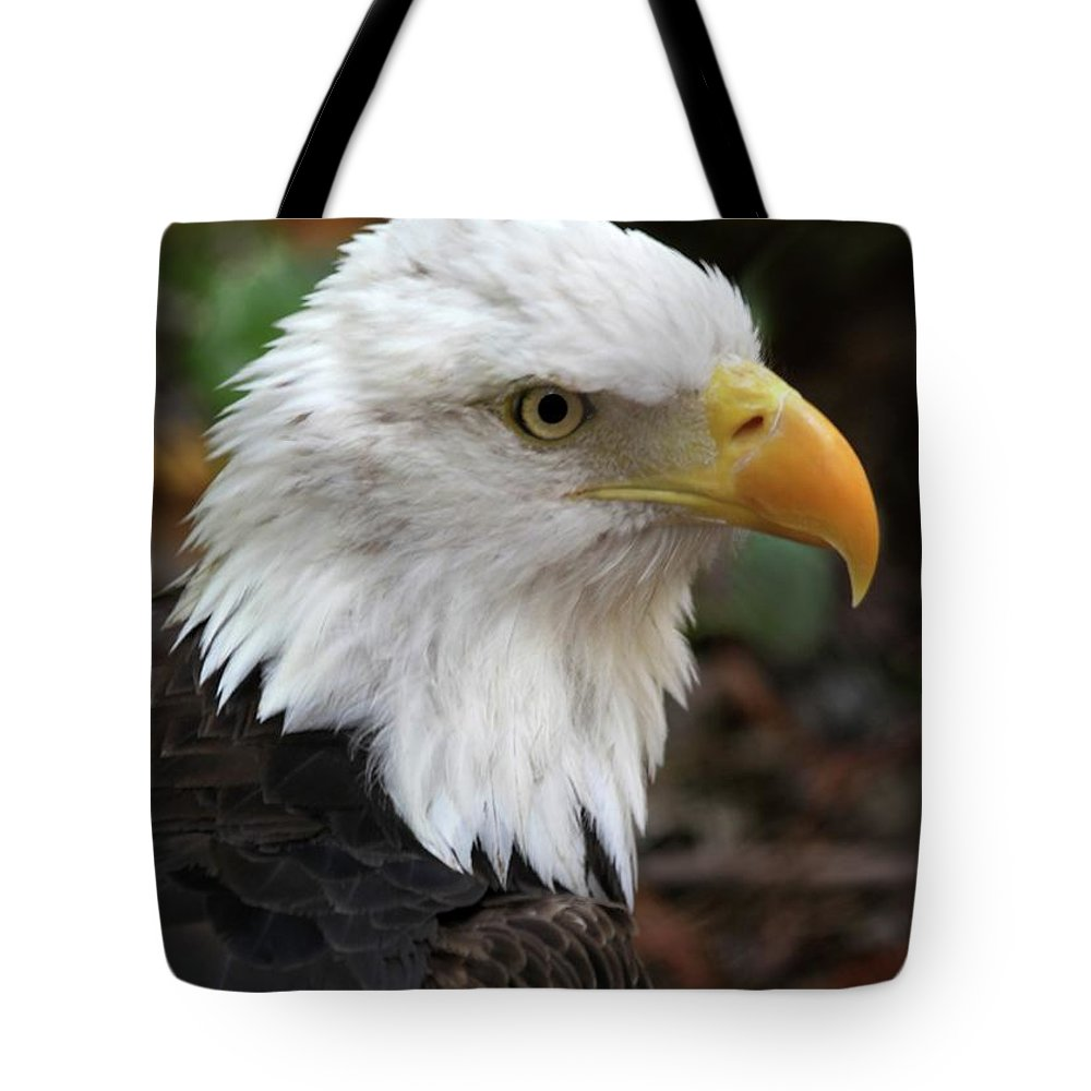 Eagle Tote Bag featuring the photograph Awesome American Bald Eagle by Sabrina L Ryan