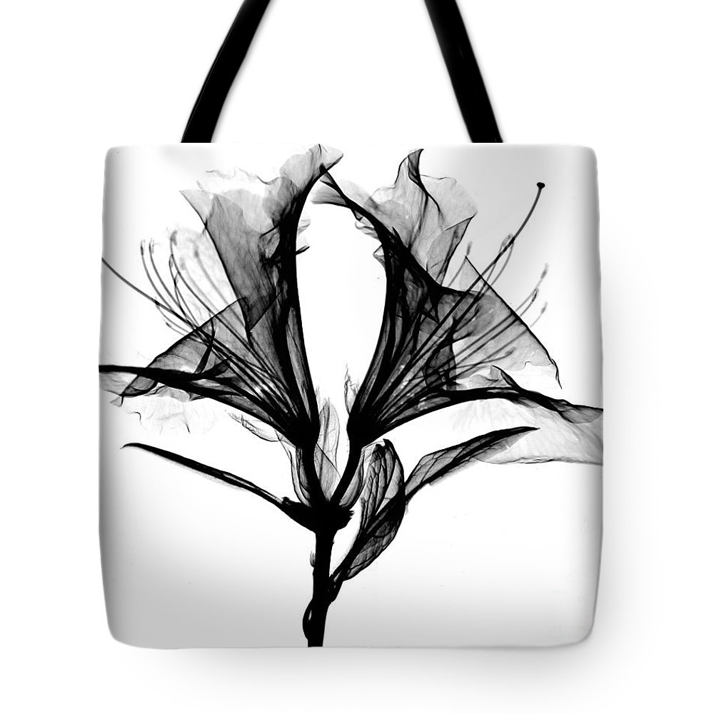 Azalea Flower X Ray Tote Bag For Sale By Bert Myers