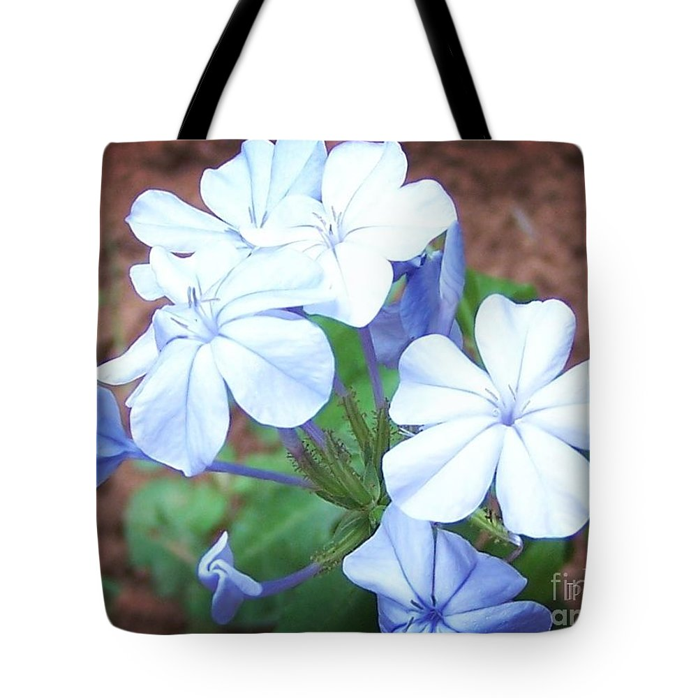 Flower Tote Bag featuring the photograph Azure Aura by Jamie Johnson
