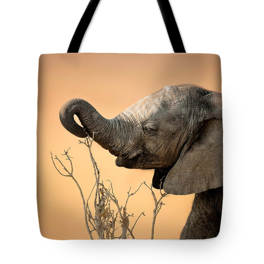 Elephant Tote Bag featuring the photograph Baby elephant reaching for branch by Johan Swanepoel