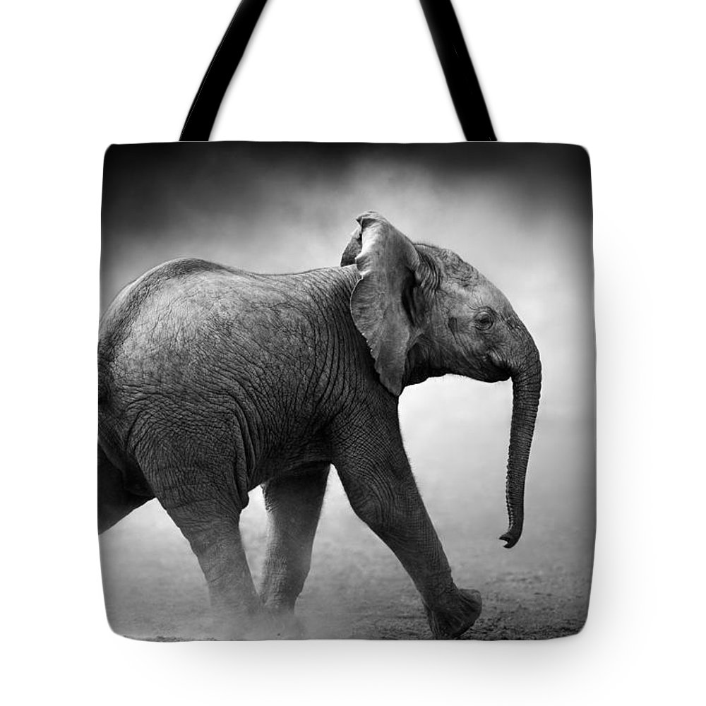 Elephant Tote Bag featuring the photograph Baby Elephant running by Johan Swanepoel