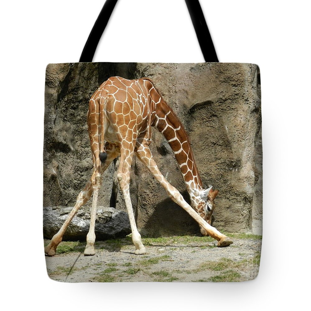 Baby Tote Bag featuring the photograph Baby Giraffe 1 by Heather Jane