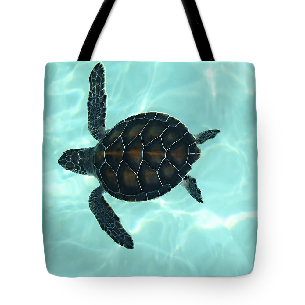 Baby Sea Turtle Tote Bag featuring the photograph Baby Sea Turtle by Ellen Henneke