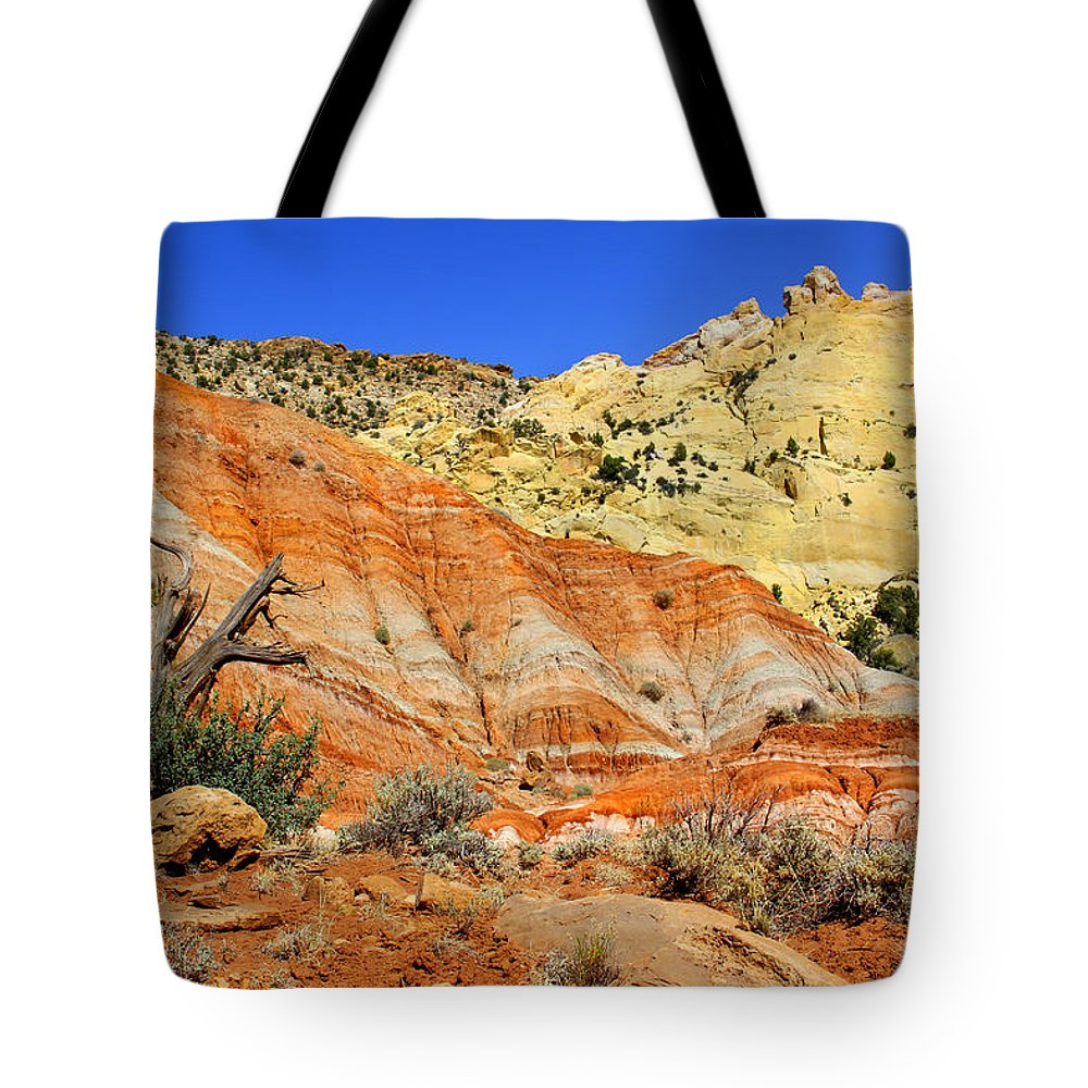 Desert Tote Bag featuring the photograph Back Roads Utah by Mike McGlothlen
