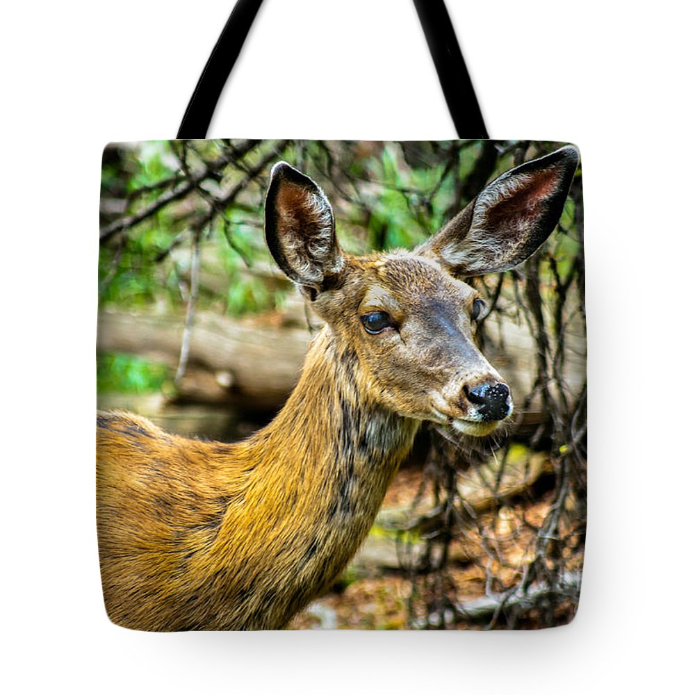 Blacked-tail Tote Bag featuring the photograph Back-tail Doe by Robert Bales