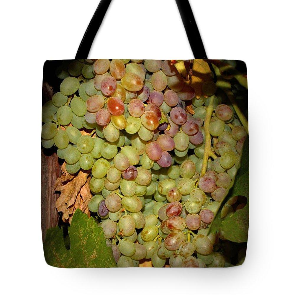 Fruits Tote Bag featuring the photograph Backyard Garden Series -hidden Grape Cluster by Carol Groenen