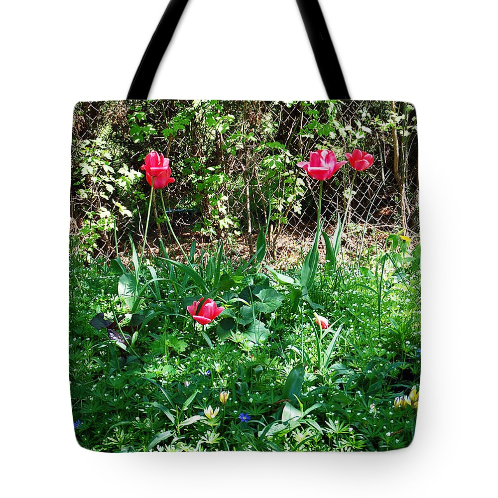 Tulip Tote Bag featuring the photograph Backyard Tulips by Aimee L Maher ALM GALLERY