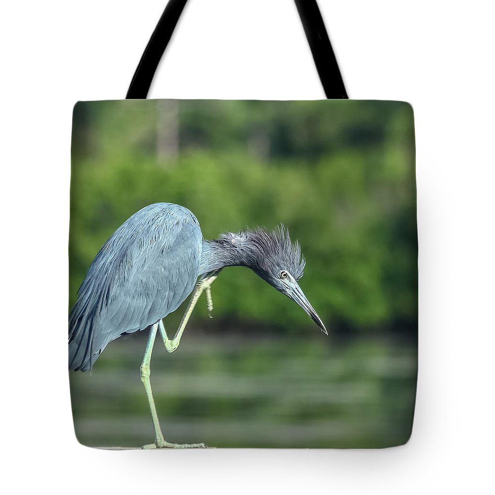 Florida Tote Bag featuring the photograph Bad Hair Day by Jane Luxton