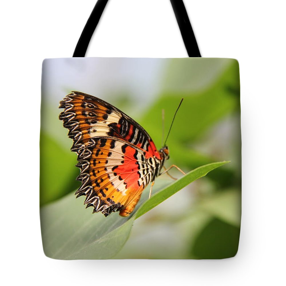Nature Tote Bag featuring the photograph Balance by Jackie Mestrom