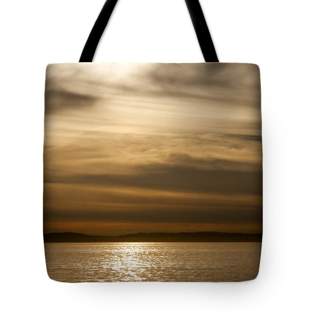 Balboa Tote Bag featuring the photograph Balboa Gold Tones by Chris Brannen