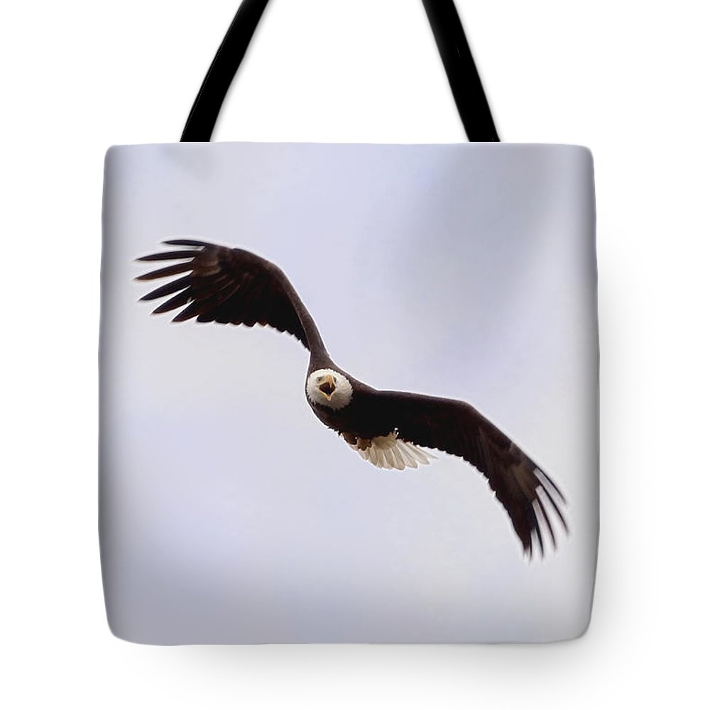 Eagle Tote Bag featuring the photograph Bald Eagle Calling by Lori Tordsen