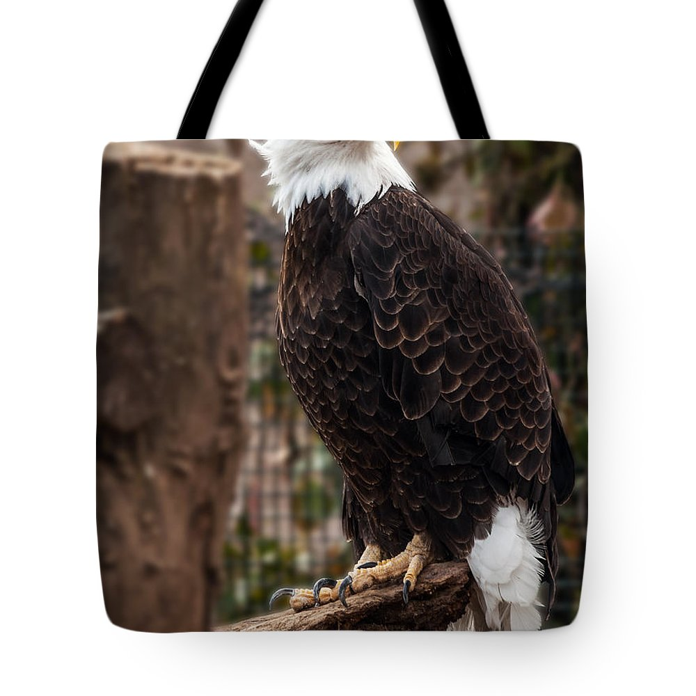 Eagle Tote Bag featuring the photograph Bald Eagle by Mark Papke