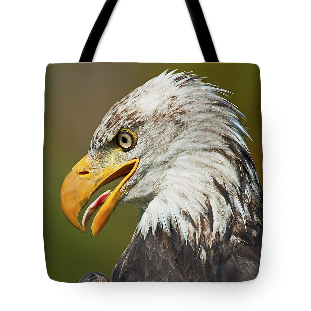 Nina Stavlund Tote Bag featuring the photograph Bald Eagle... by Nina Stavlund