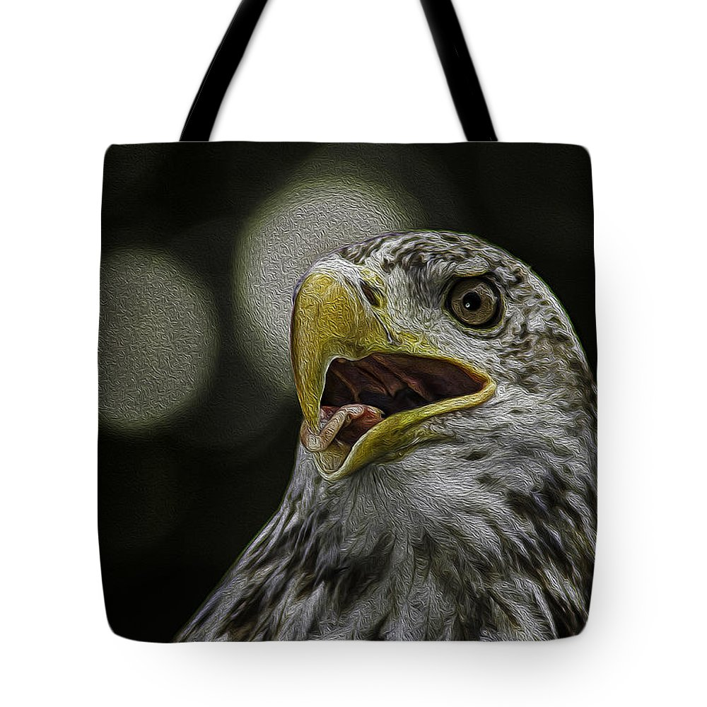 Eagle Tote Bag featuring the photograph Bald Eagle by Phil Cardamone