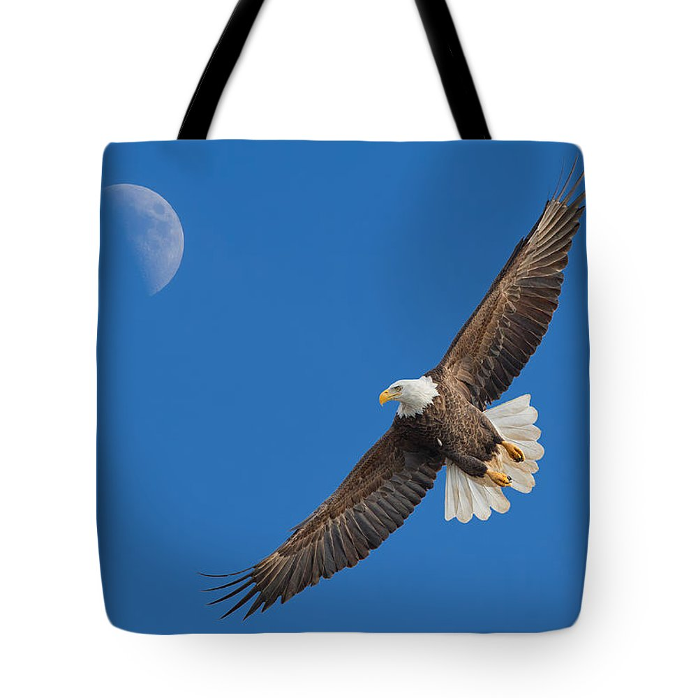 Bald Eagle Tote Bag featuring the photograph Bald Eagle Soaring With The Moon by Martin Belan