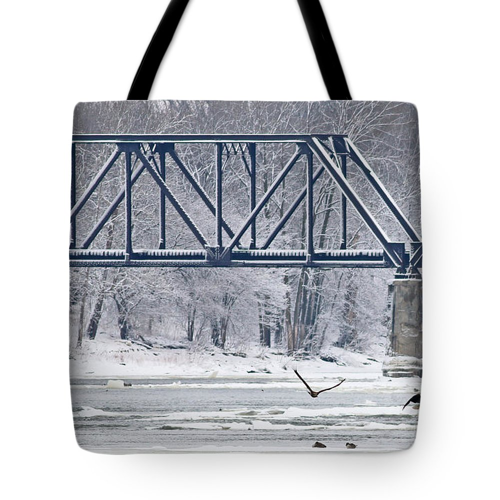 Bald Eagle Tote Bag featuring the photograph Bald Eagle With Fish By Railroad Bridge 6639 by Jack Schultz