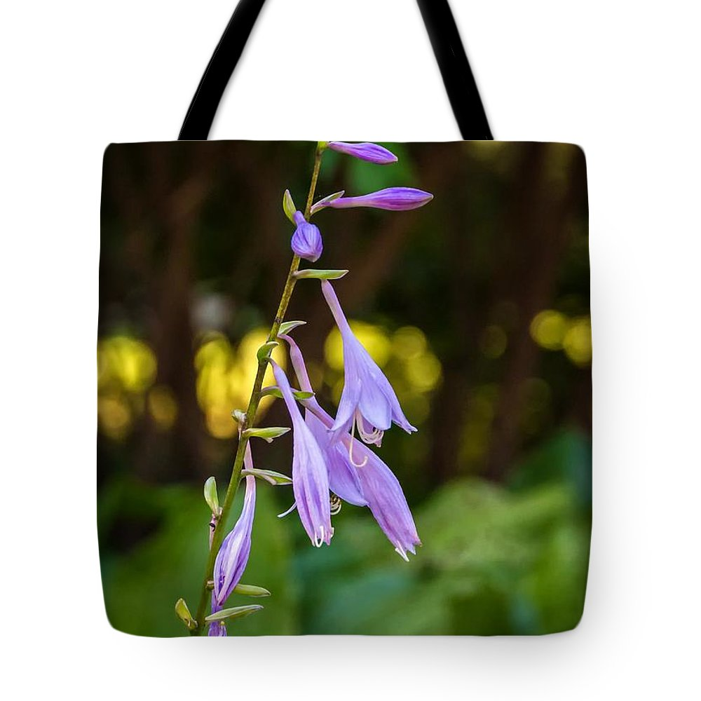 Places Tote Bag featuring the photograph Ballerina by Steve Harrington