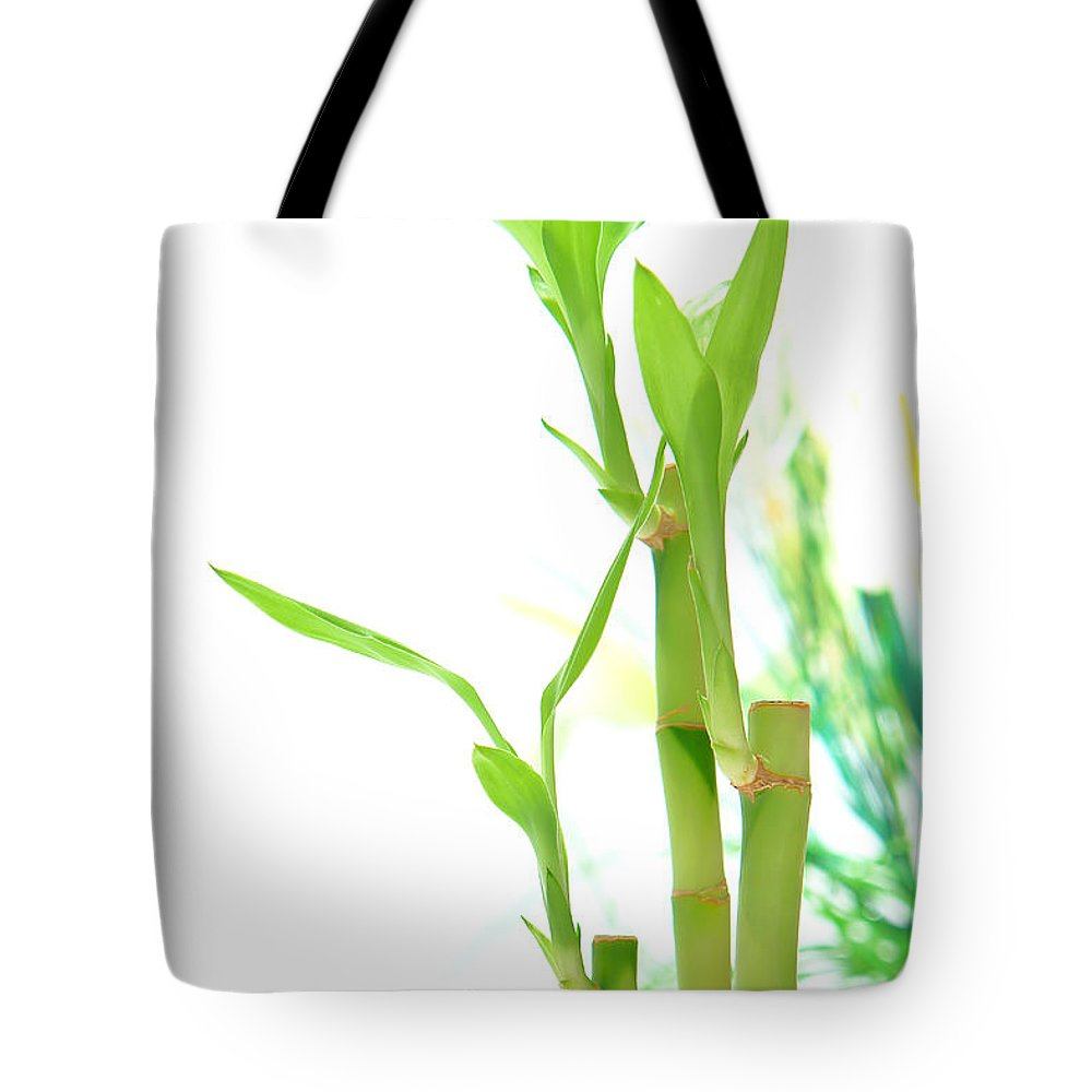 Bamboo Tote Bag featuring the photograph Bamboo Stems And Leaves by Olivier Le Queinec