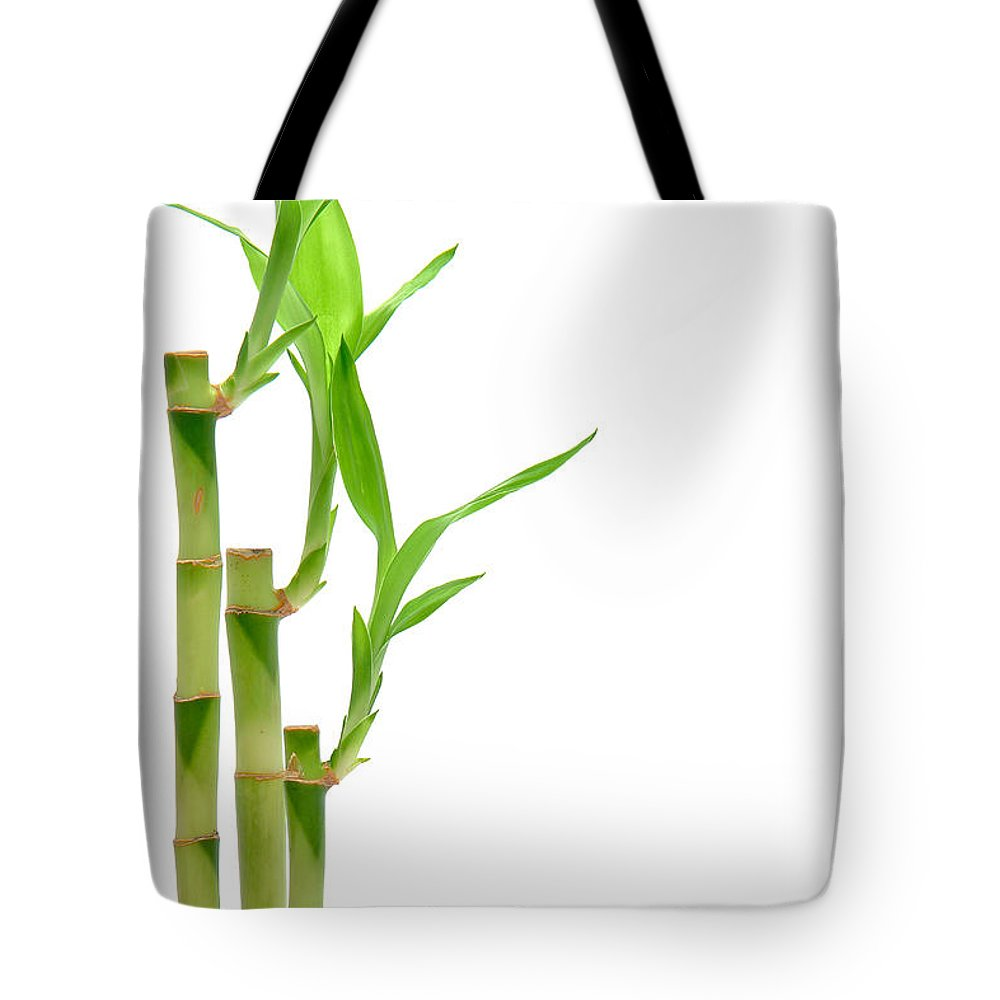 Bamboo Tote Bag featuring the photograph Bamboo Stems In Black Vase by Olivier Le Queinec