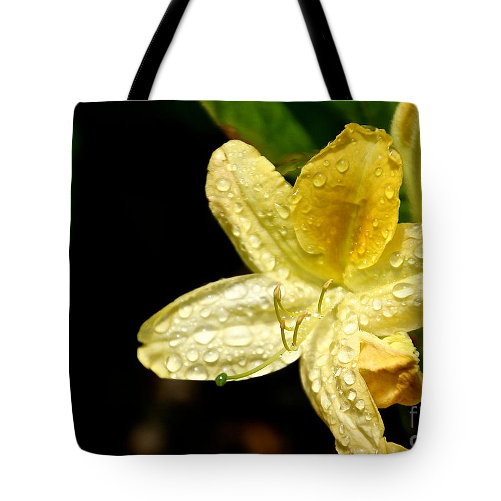 Flower Tote Bag featuring the photograph Banana Azalea by Susan Herber
