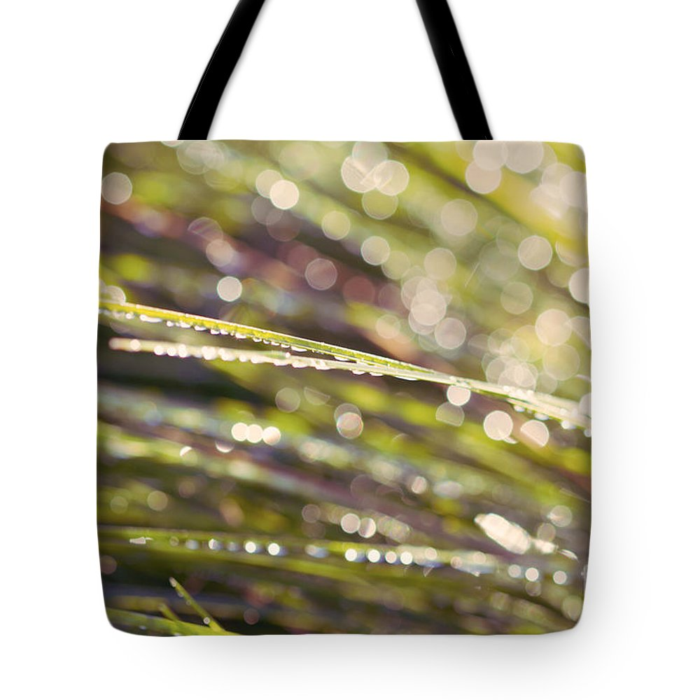 Dew Tote Bag featuring the photograph Barbara Ann by Linda Lees