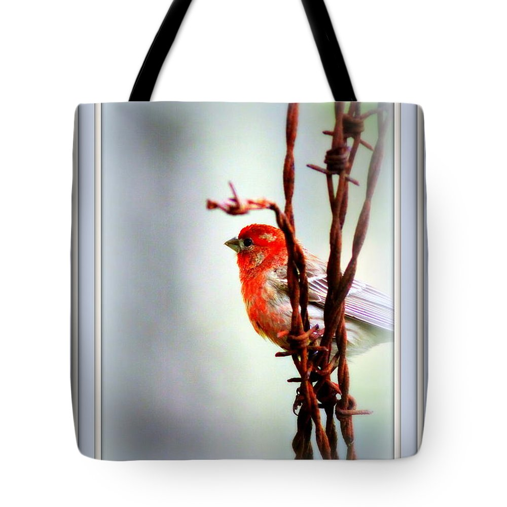 Finch Tote Bag featuring the photograph Barbed Wire And Finch by Travis Truelove