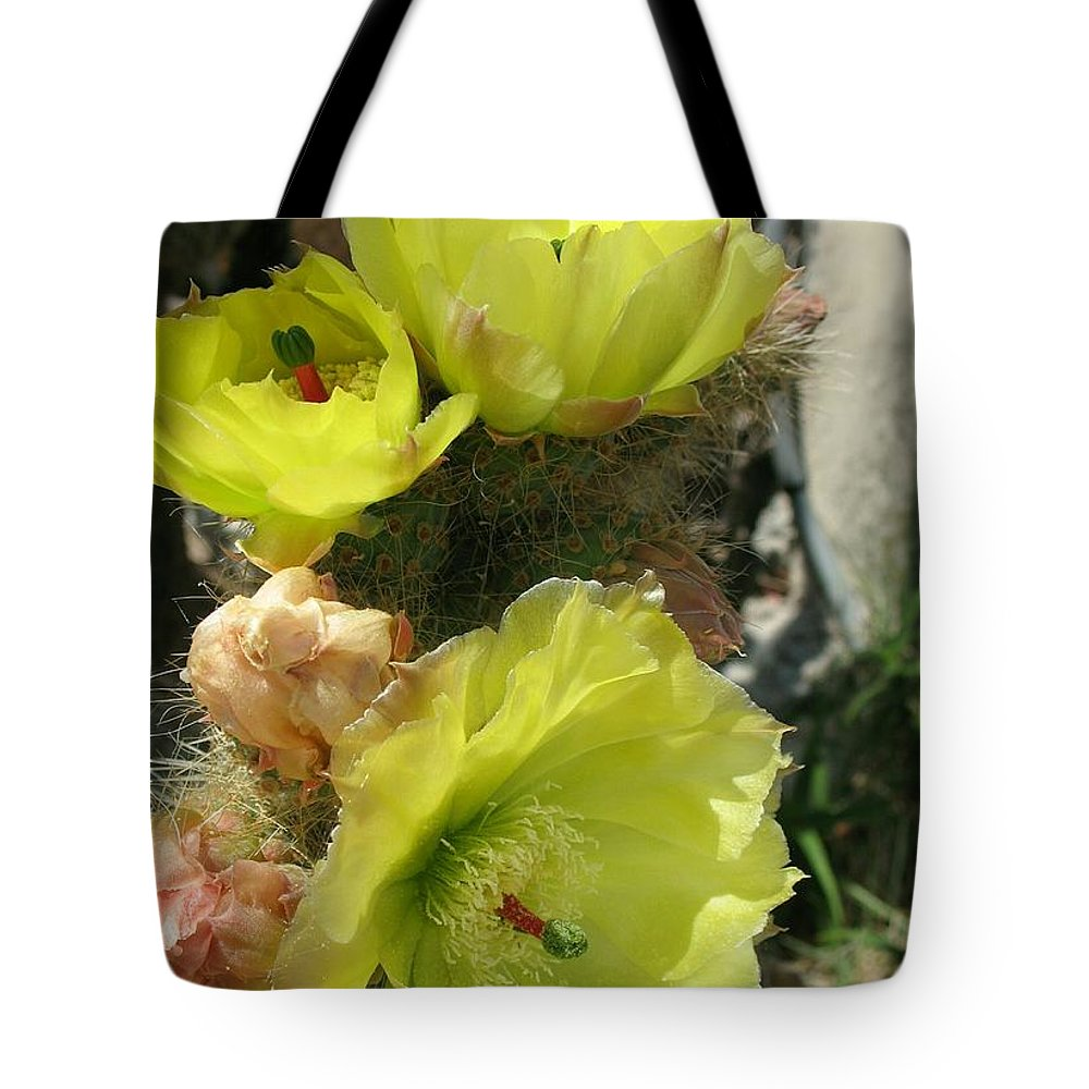 Cactus Tote Bag featuring the photograph Barded Beauty by Christiane Schulze Art And Photography