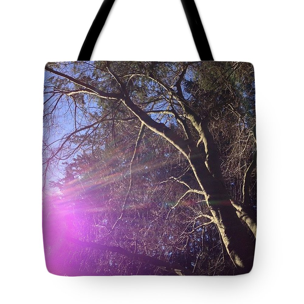 Bare Naked Branches I Tote Bag featuring the photograph Bare Naked Branches I by Anna Porter