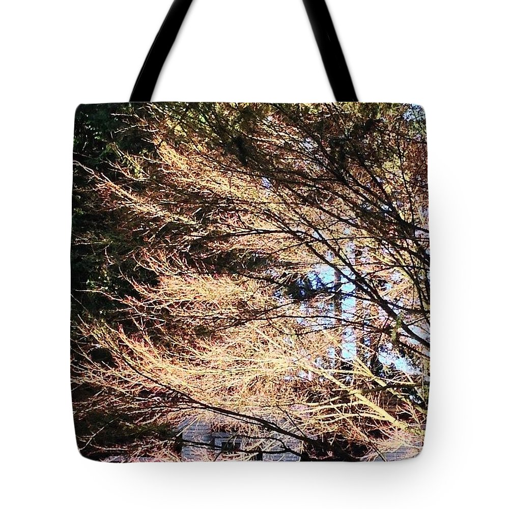 Bare Naked Branches Ii Tote Bag featuring the photograph Bare Naked Branches II by Anna Porter
