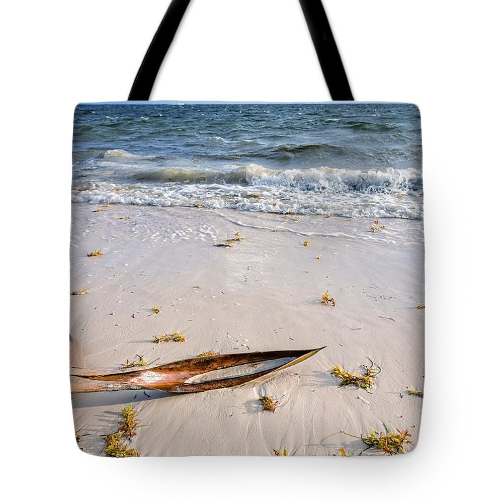 Beach Tote Bag featuring the photograph Barks by Viktor Birkus