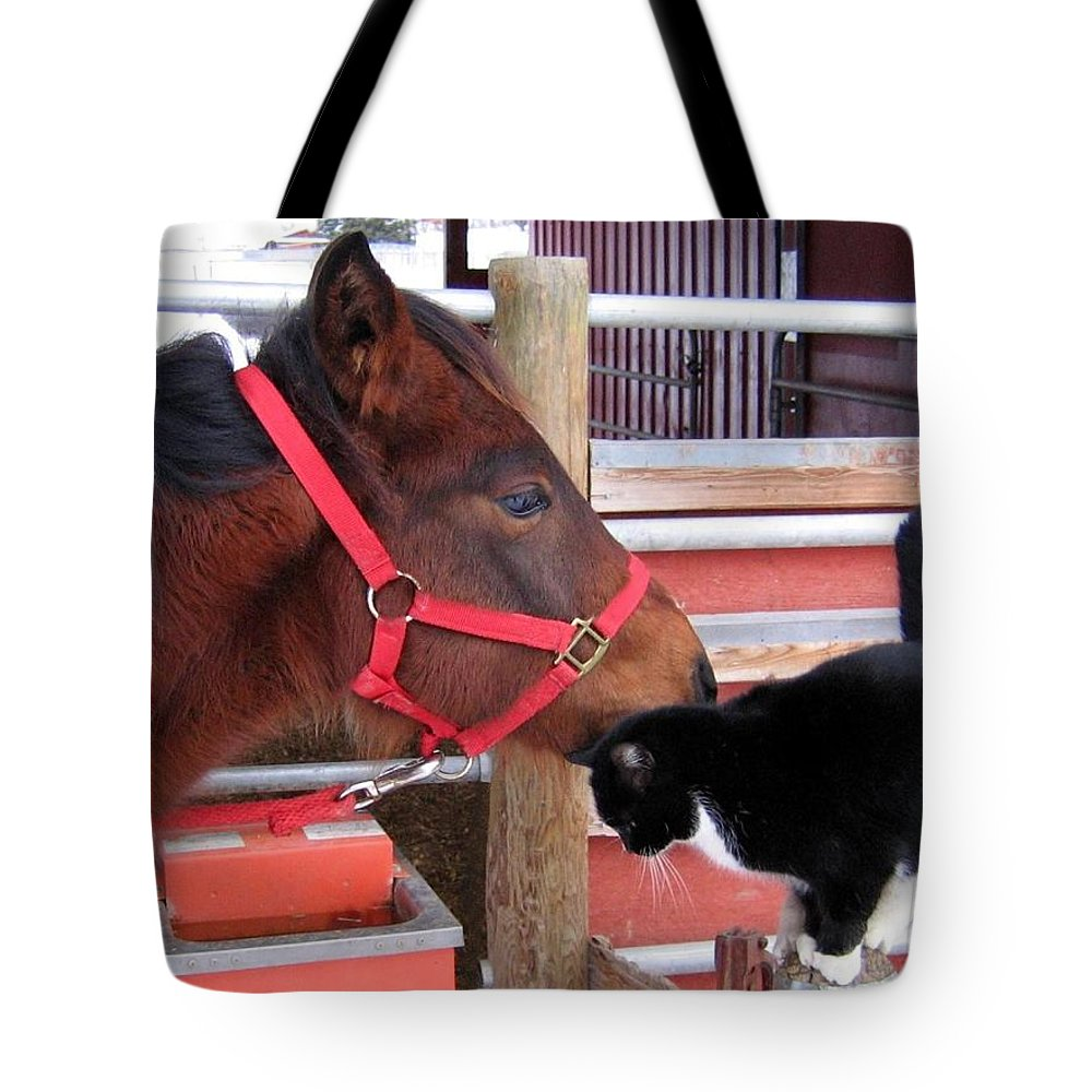 Horse Tote Bag featuring the photograph Barn Buddies by Will Borden