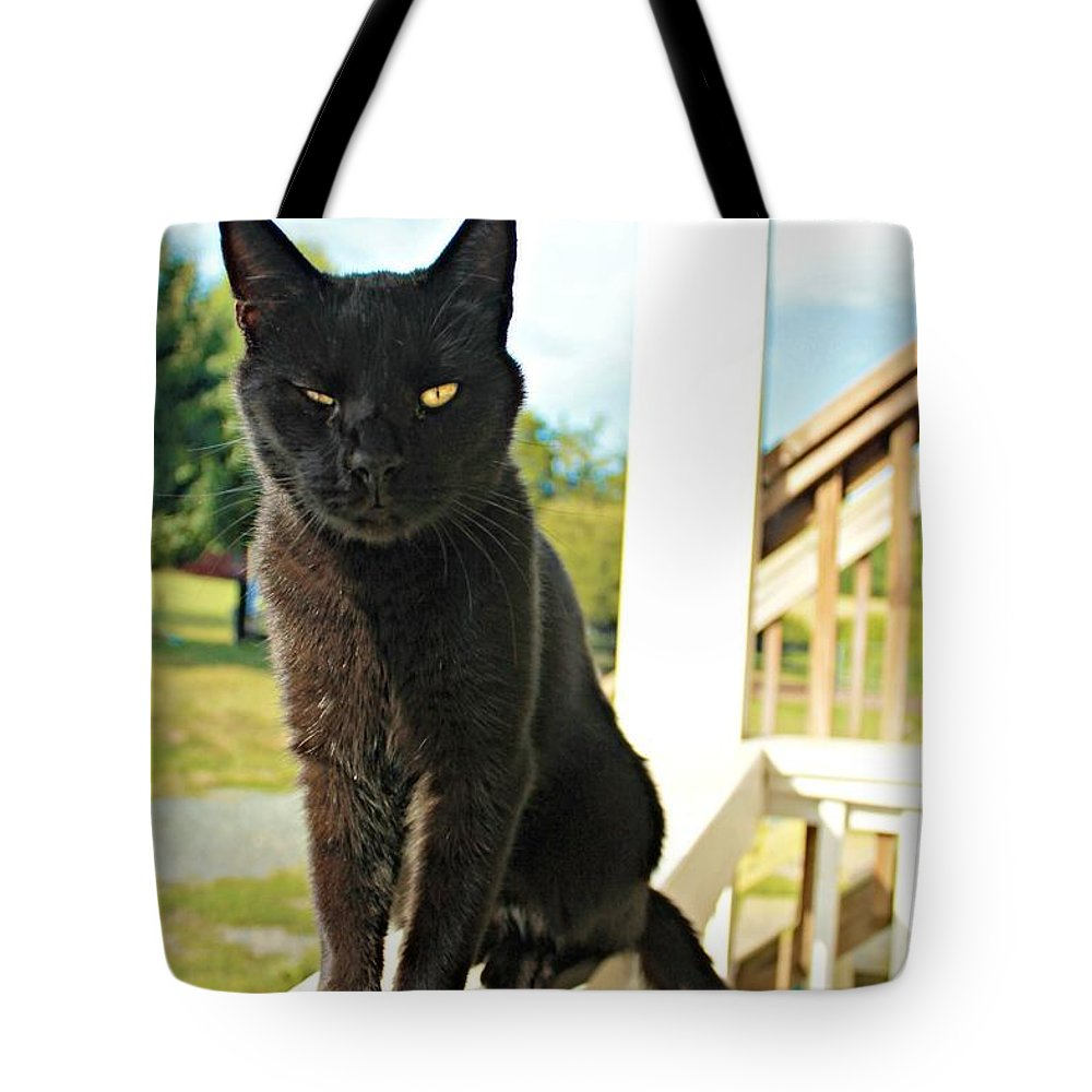 Cat Tote Bag featuring the photograph Barn Cat Pose by Vicki Dreher