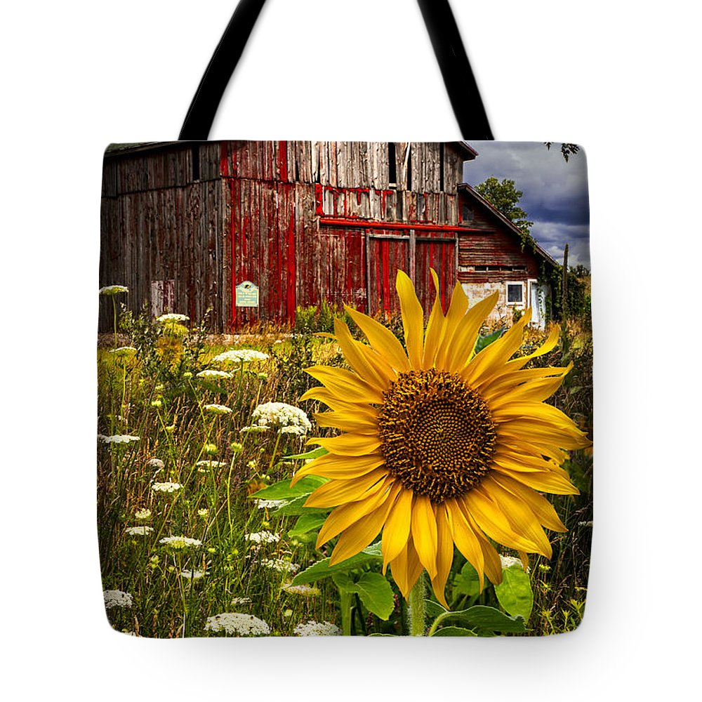 Barn Tote Bag featuring the photograph Barn Meadow Flowers by Debra and Dave Vanderlaan