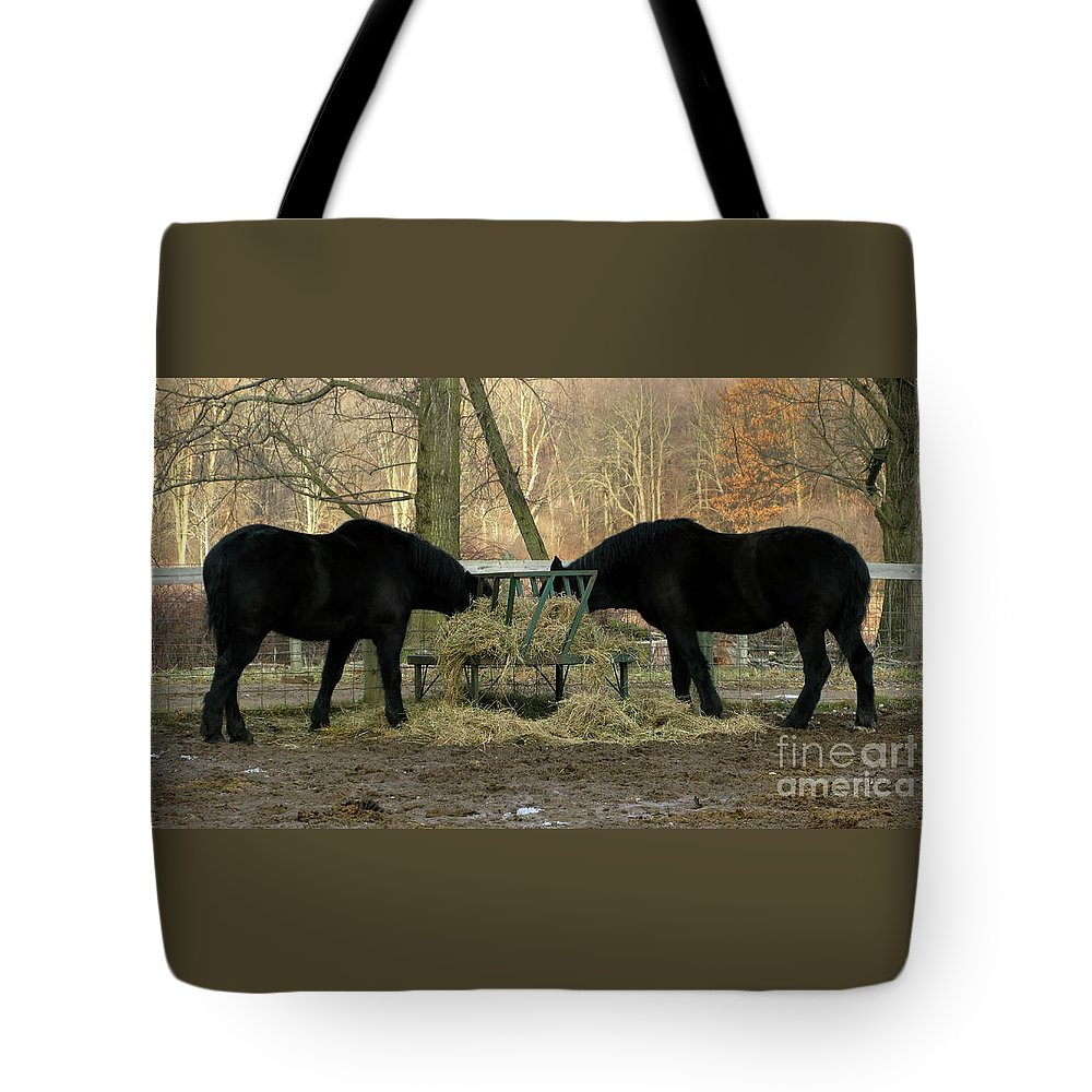 Horse Tote Bag featuring the photograph Barnyard Beauties by Ann Horn