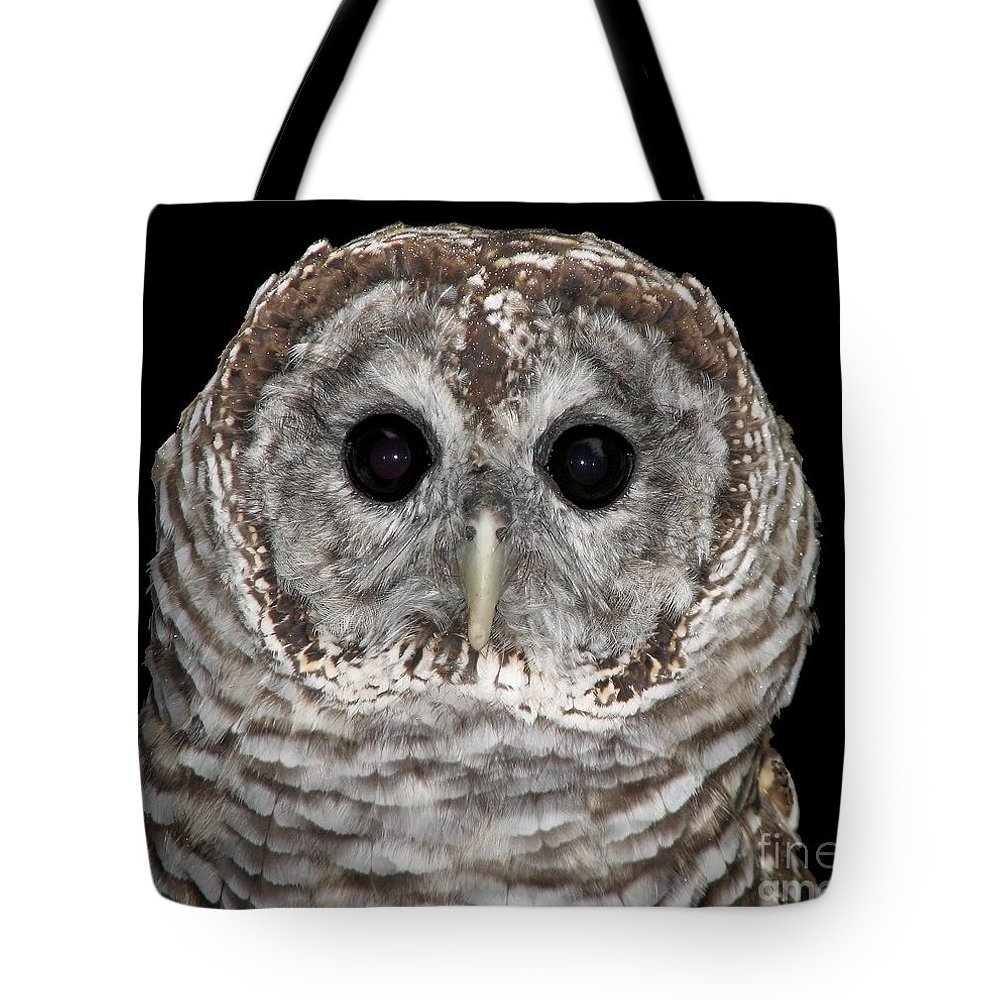 Barred Owl Tote Bag featuring the photograph Barred Owl 3 by Rose Santuci-Sofranko