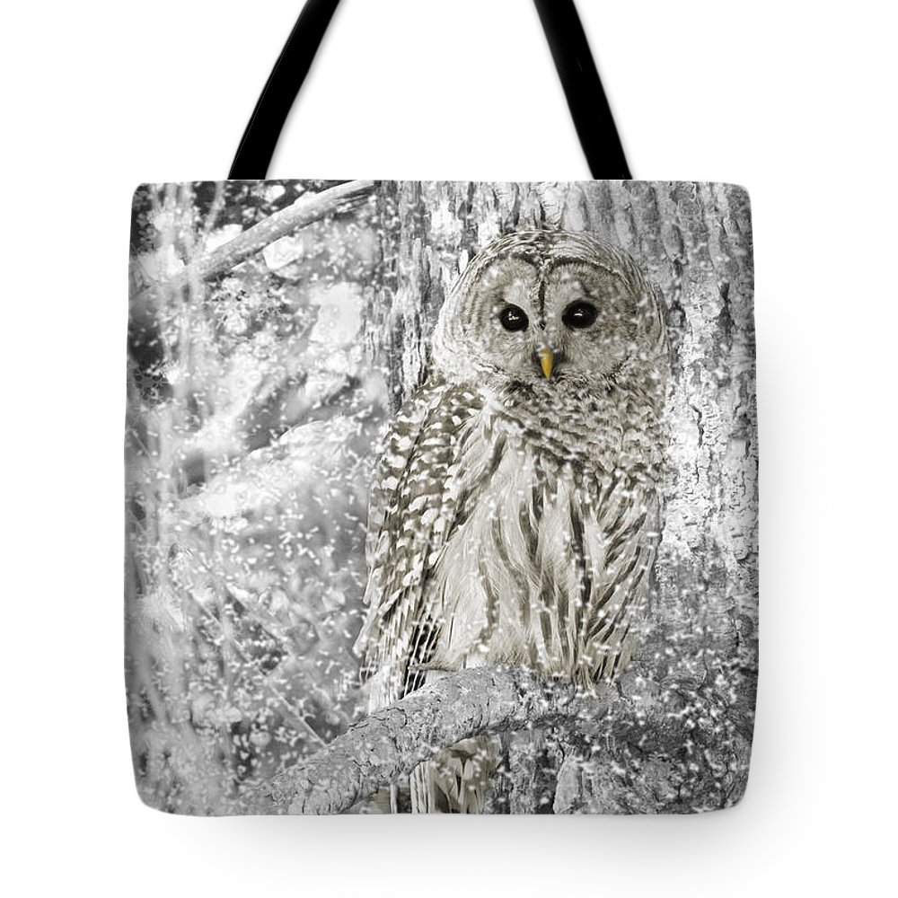 Owl Tote Bag featuring the photograph Barred Owl Snowy Day In The Forest by Jennie Marie Schell