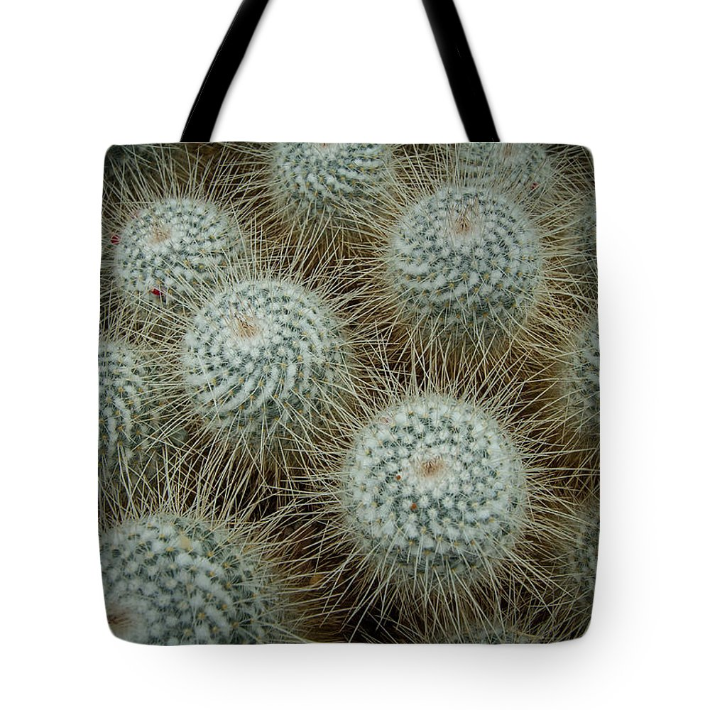 Cactus Tote Bag featuring the photograph Barrel Head Cactus by Roger Mullenhour