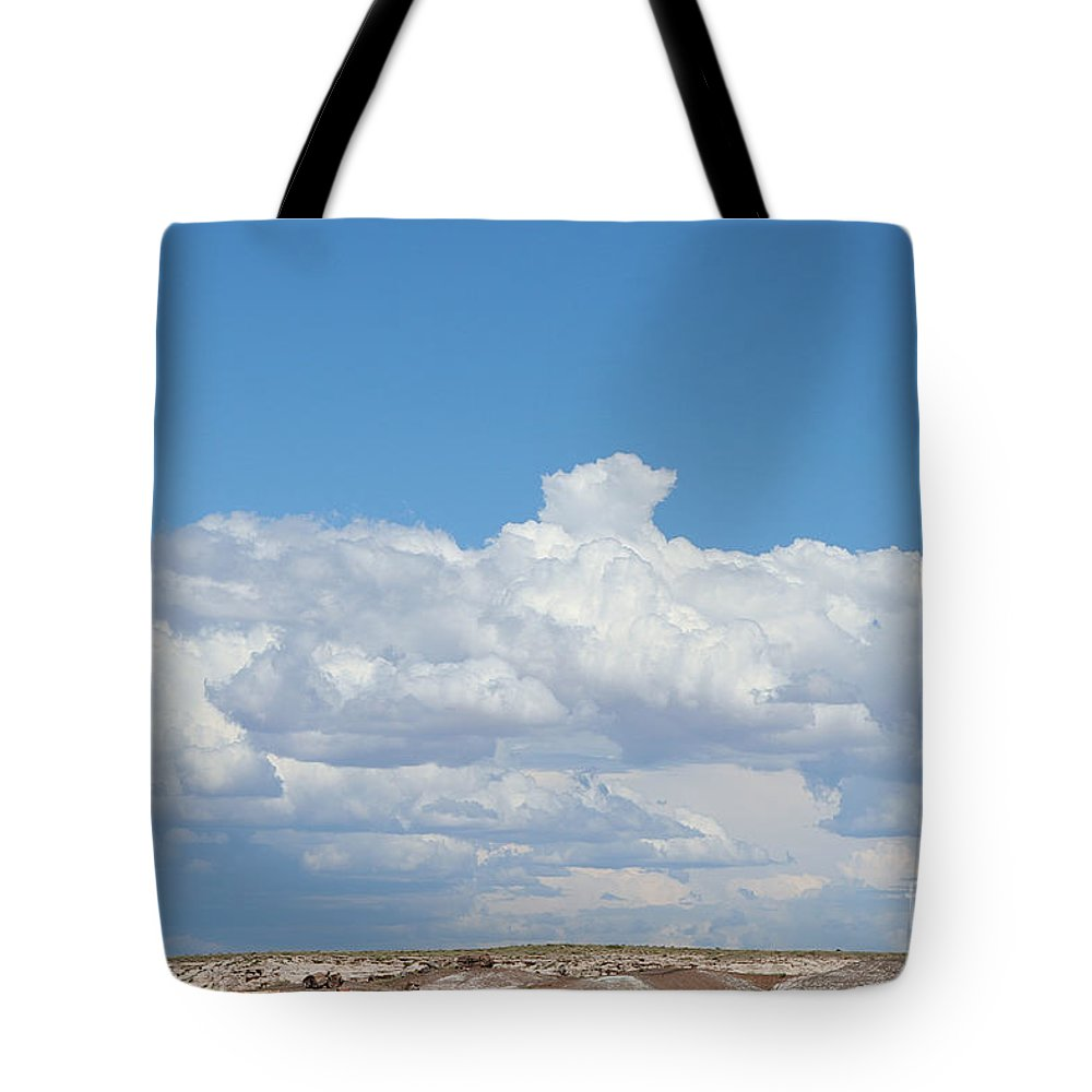 Petrified Forest Tote Bag featuring the photograph Barren Horizon by Susan Herber